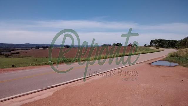 Fazenda em Canguçu