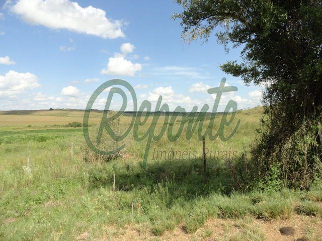 Fazenda em Rosário do Sul