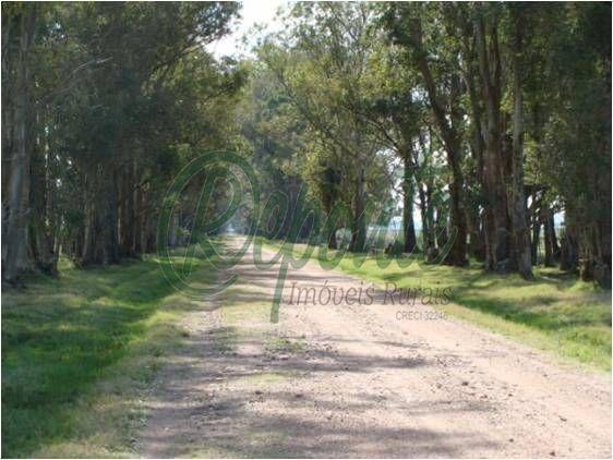 Fazenda no Uruguay