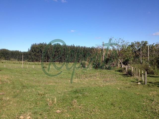 Fazenda em Encruzilhada do Sul