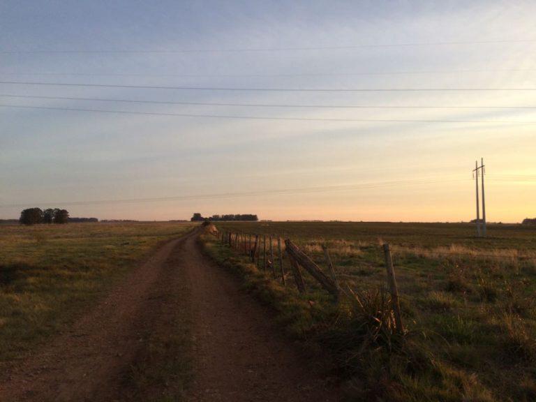 Fazenda em Alegrete